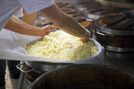 Cheese is placed in wooden barrels with linen cloths